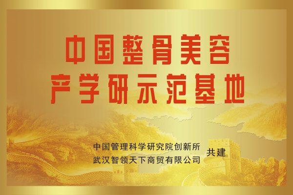 中国整骨美容产学研示范基地